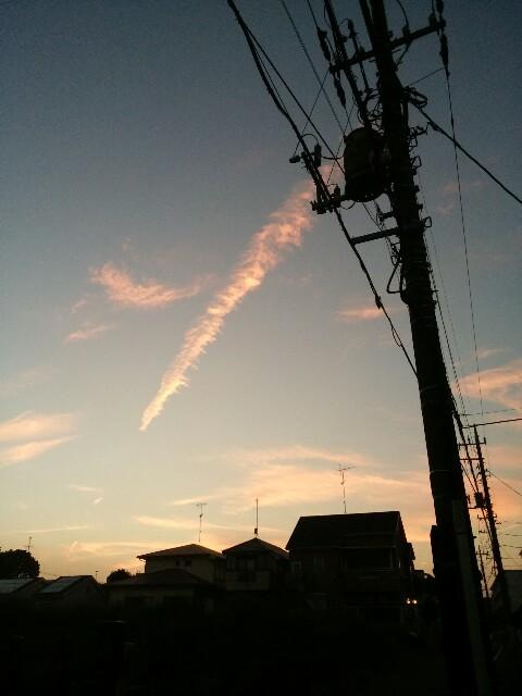 f:id:kichi-kichi:20161105161303j:plain