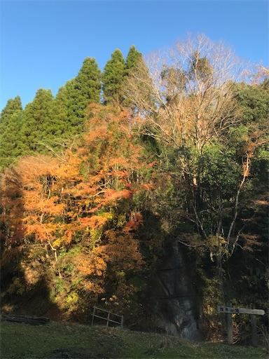 f:id:kichibun:20200102132526j:image