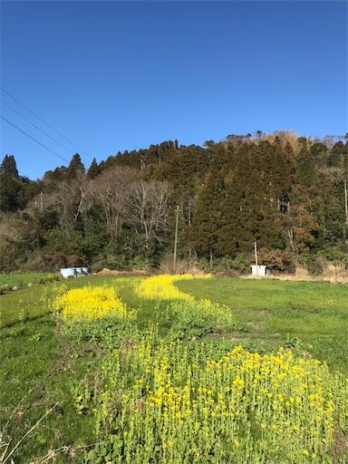 f:id:kichibun:20200130194850j:image