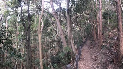 f:id:kichibun:20200301211101j:image