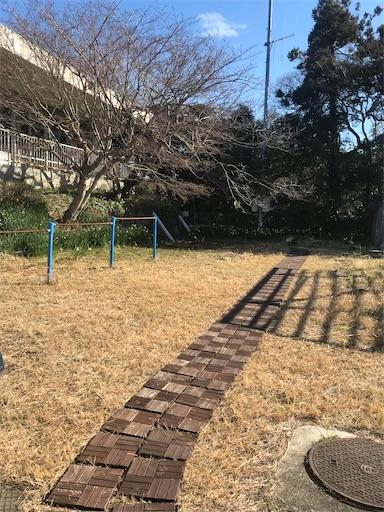 f:id:kichibun:20200301211256j:image