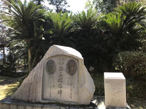 f:id:kichibun:20200311213736j:image