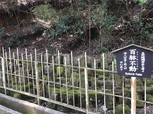 f:id:kichibun:20200311214004j:image