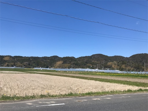 f:id:kichibun:20200324114302j:image