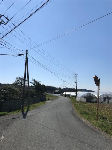 f:id:kichibun:20200324114323j:image