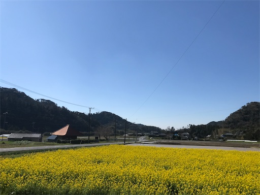 f:id:kichibun:20200324114325j:image