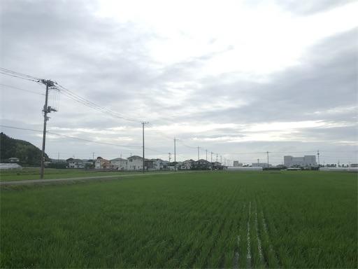 f:id:kichibun:20200701195957j:image
