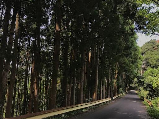 f:id:kichibun:20200817115035j:image