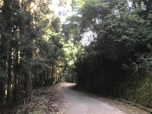 f:id:kichibun:20200817115225j:image