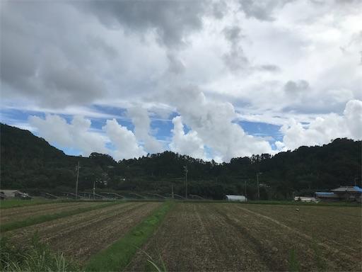 f:id:kichibun:20200918194706j:image