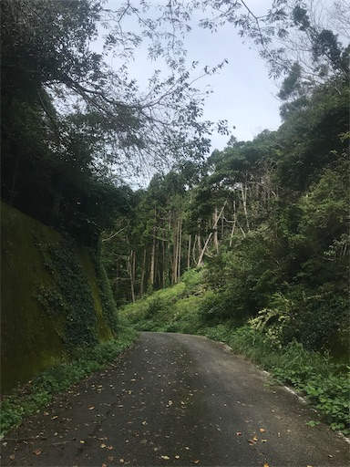 f:id:kichibun:20201004093751j:image