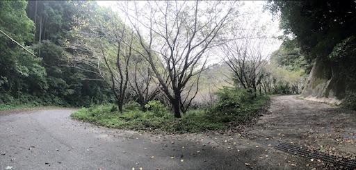 f:id:kichibun:20201004093827j:image