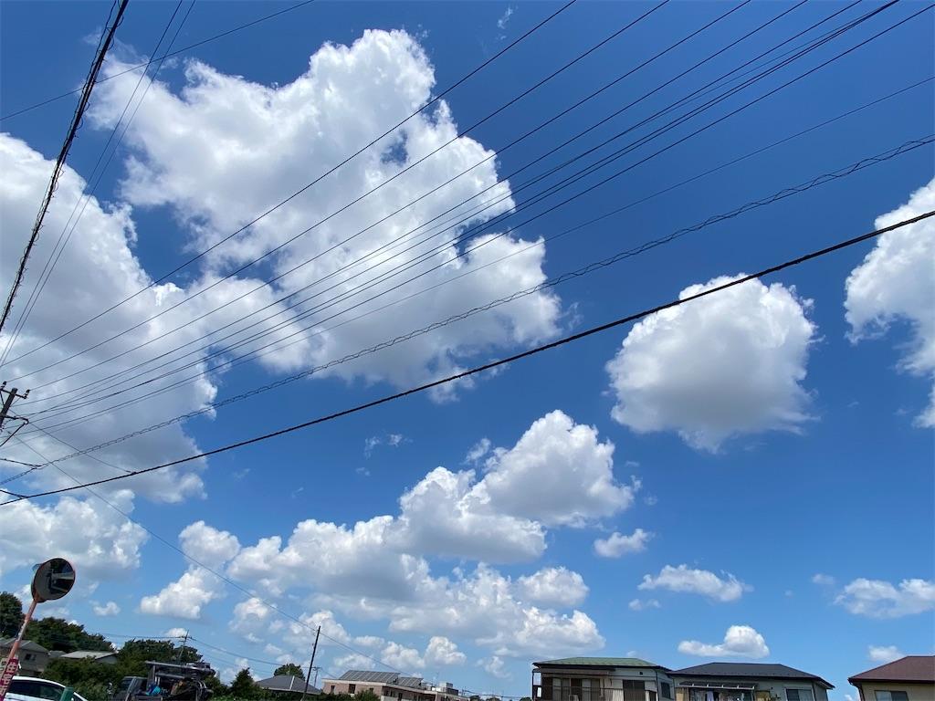 f:id:kicky-kite:20210725111023j:image