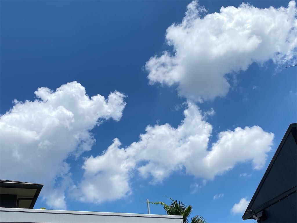 f:id:kicky-kite:20210730190100j:image