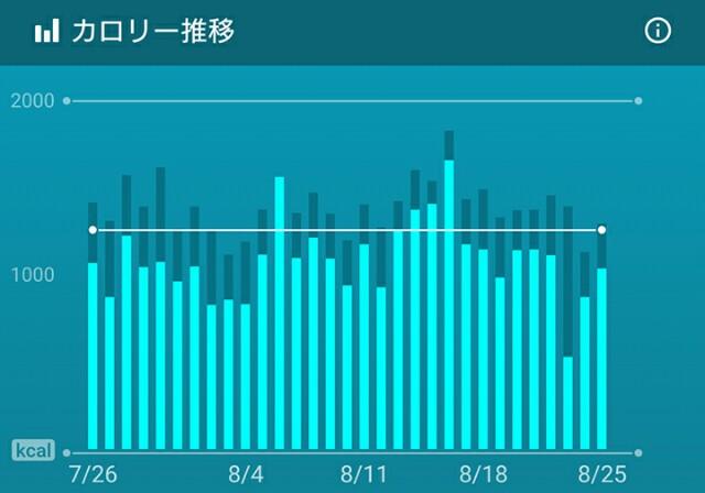 f:id:kicokico:20160825185054j:image