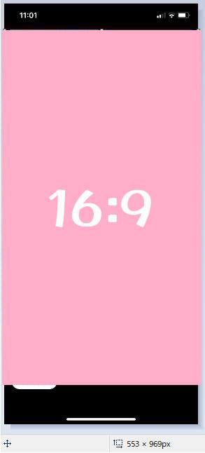 f:id:kidachir:20201111111226j:plain