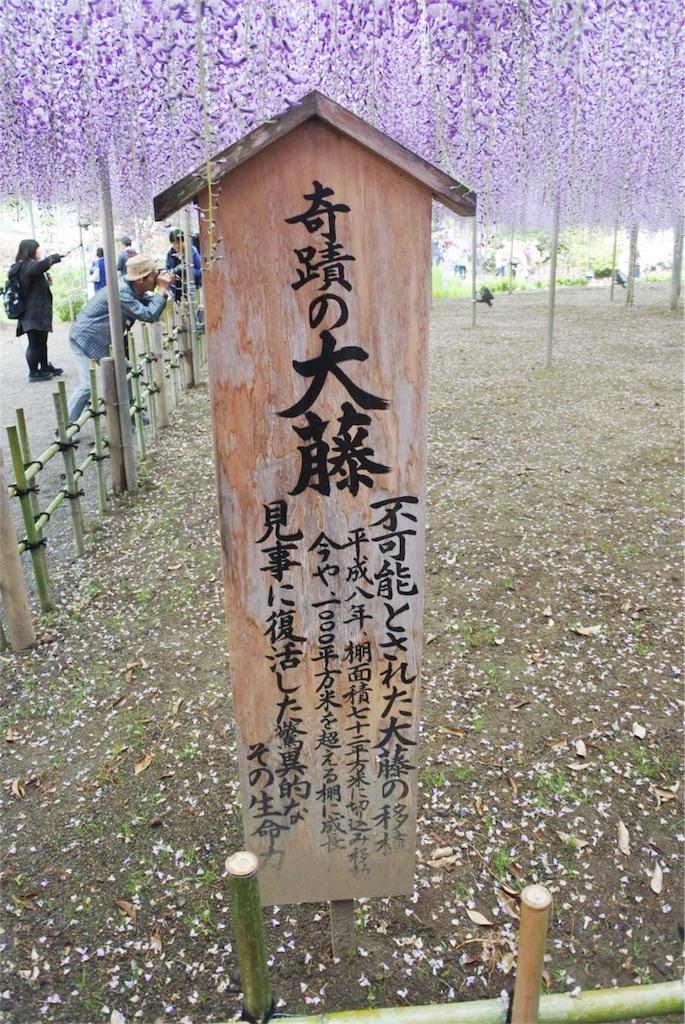 f:id:kifujinnotawamure:20180424190103j:image