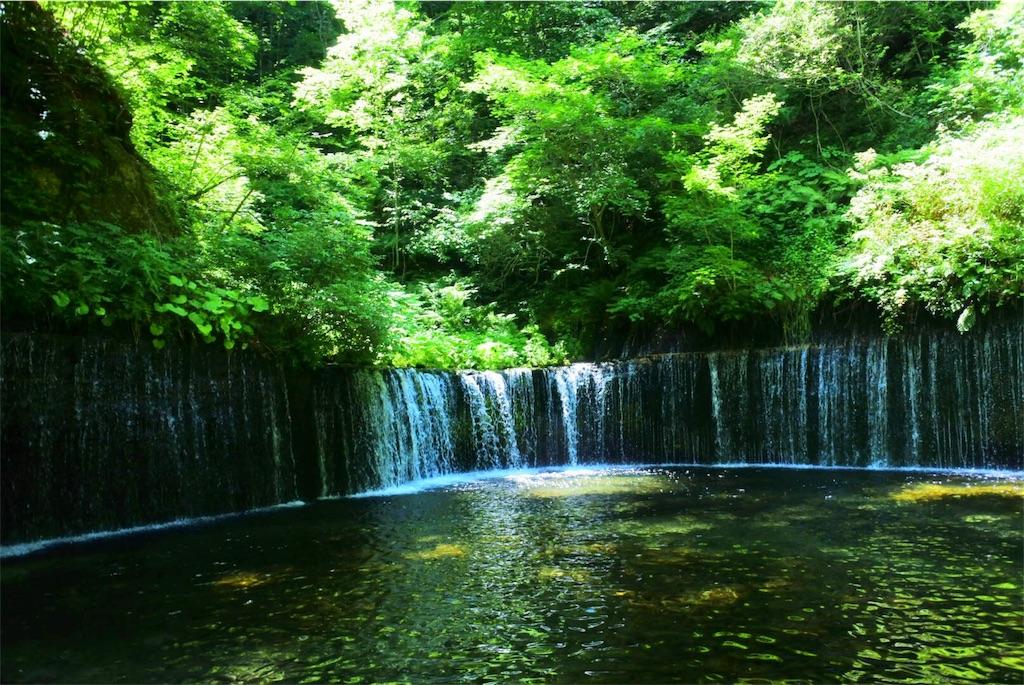 f:id:kifujinnotawamure:20180701152853j:image