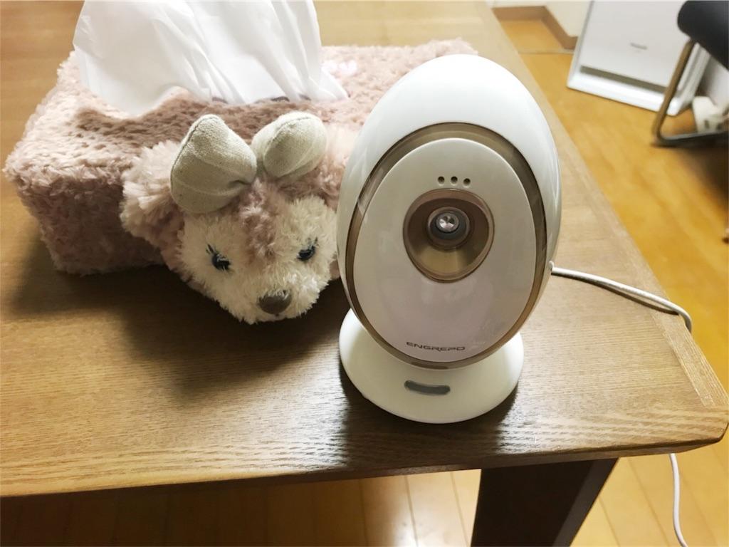 f:id:kifujinnotawamure:20190111092021j:image