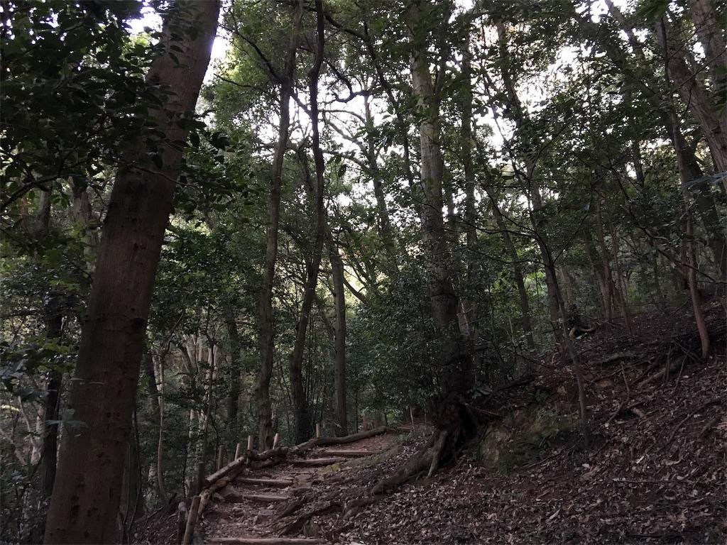 f:id:kifune23:20171105075526j:image