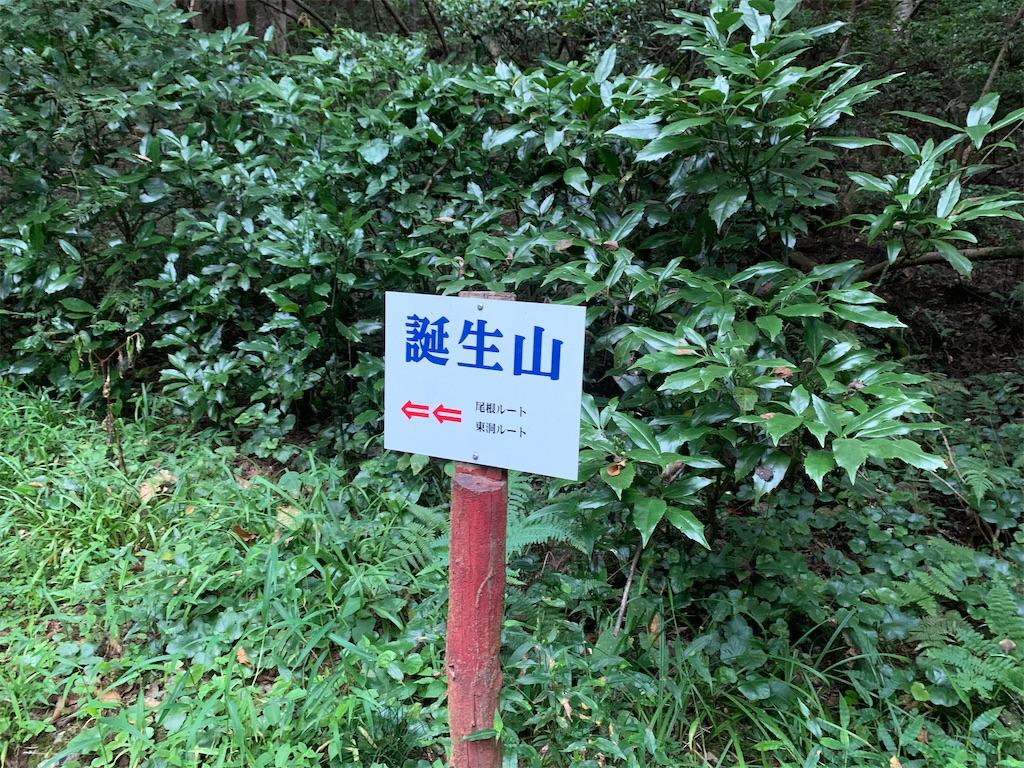f:id:kifune23:20200815113302j:image