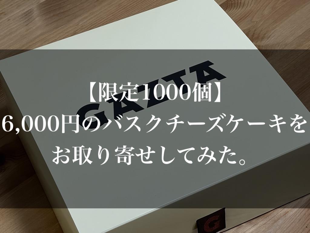 f:id:kig58od2:20210608125801j:plain