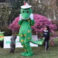 緑の恐竜着ぐるみ 竜の着ぐるみ