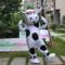 牛着ぐるみ 乳牛着ぐるみ http://www.mascotshows.jp/product/cow-mascot-adult-costum