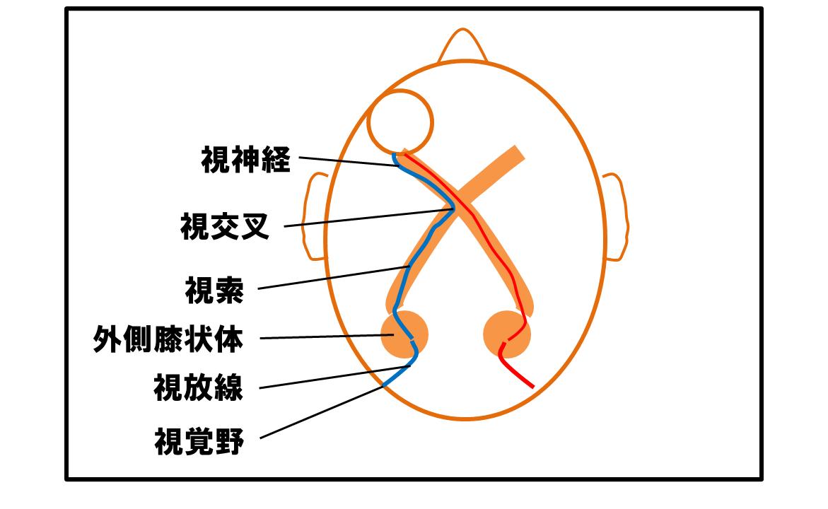 f:id:kigyou-pt:20200211094222p:plain