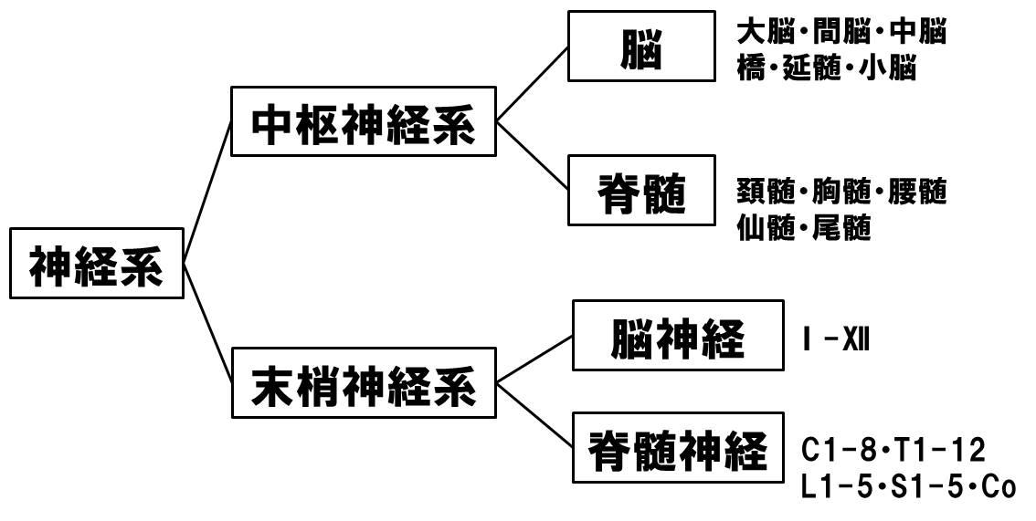 f:id:kigyou-pt:20200731115511j:plain
