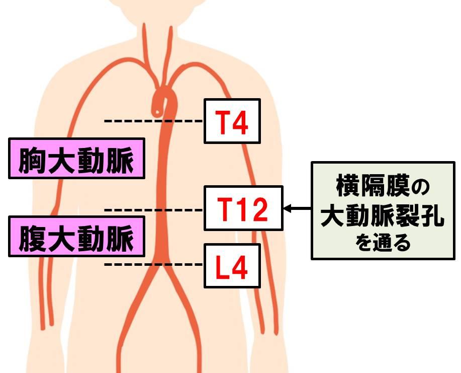 f:id:kigyou-pt:20201030052702j:plain