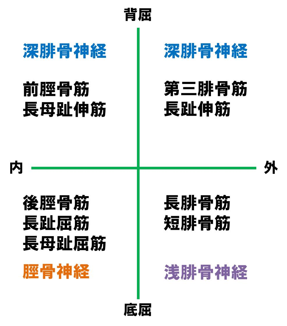 f:id:kigyou-pt:20201218120947j:plain