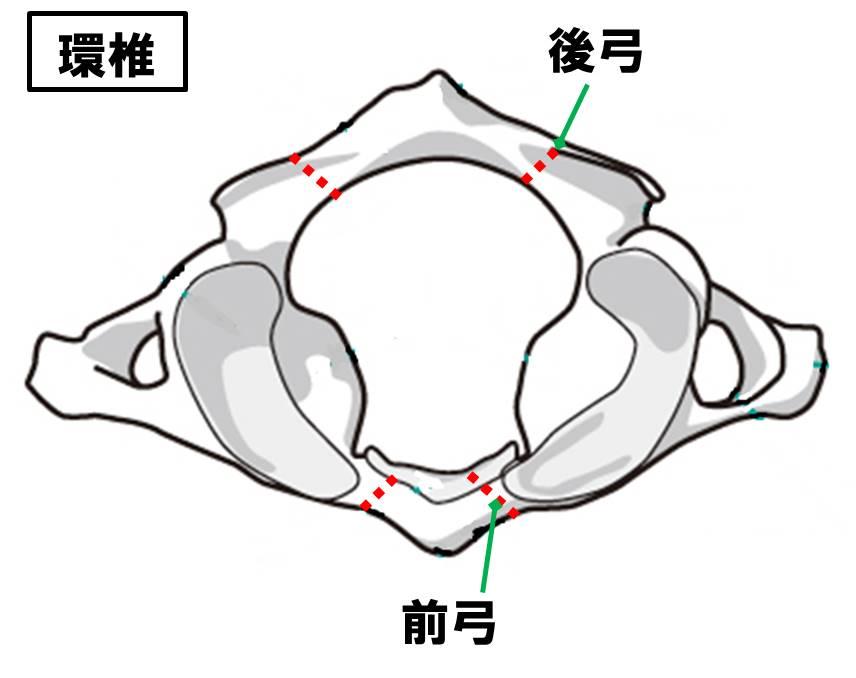 f:id:kigyou-pt:20210313165559j:plain