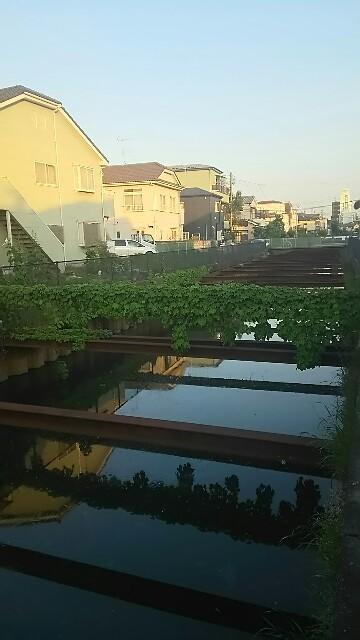 f:id:kiha-gojusan-hyakusan:20160505213215j:image
