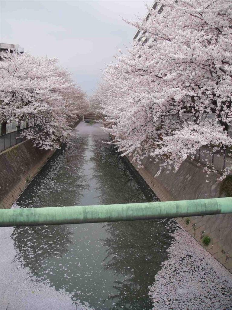 f:id:kiha-gojusan-hyakusan:20160505220254j:plain