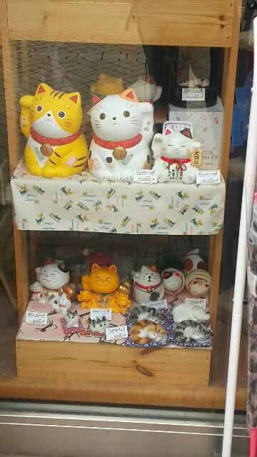 f:id:kiha-gojusan-hyakusan:20160716161931j:image