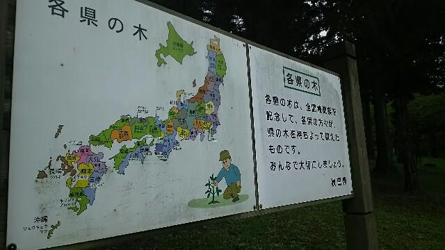 f:id:kiha-gojusan-hyakusan:20160924115445j:image