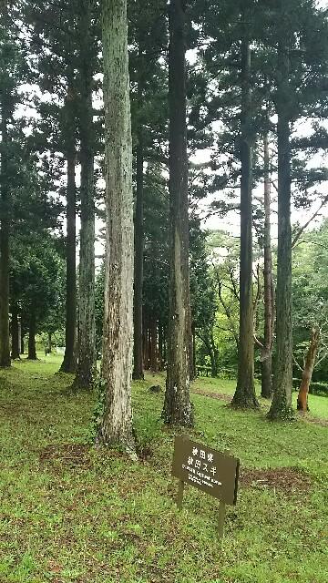 f:id:kiha-gojusan-hyakusan:20160924120900j:image