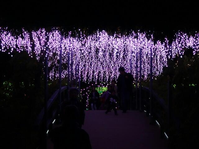 f:id:kiha-gojusan-hyakusan:20161106095426j:image