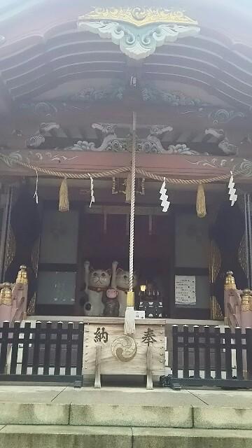 f:id:kiha-gojusan-hyakusan:20161119220811j:image