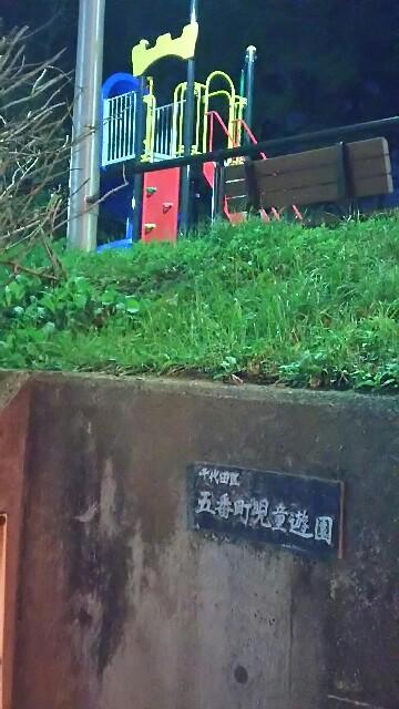 f:id:kiha-gojusan-hyakusan:20161231200530j:image