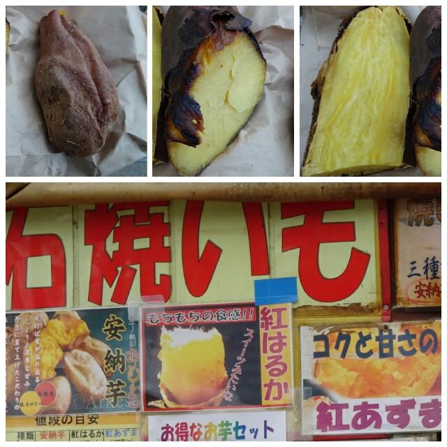 f:id:kiha-gojusan-hyakusan:20170219190411j:image