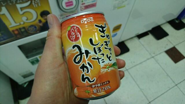 f:id:kiha-gojusan-hyakusan:20170308151714j:image