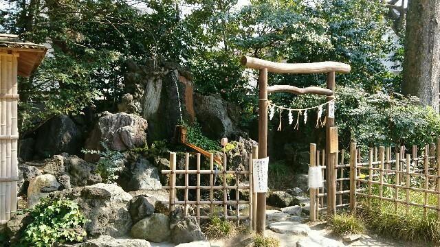 f:id:kiha-gojusan-hyakusan:20170321001007j:image
