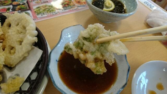 f:id:kiha-gojusan-hyakusan:20170321001219j:image