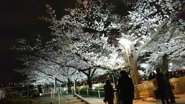 f:id:kiha-gojusan-hyakusan:20170406185707j:image