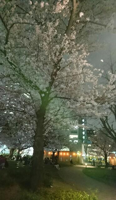 f:id:kiha-gojusan-hyakusan:20170406185949j:image