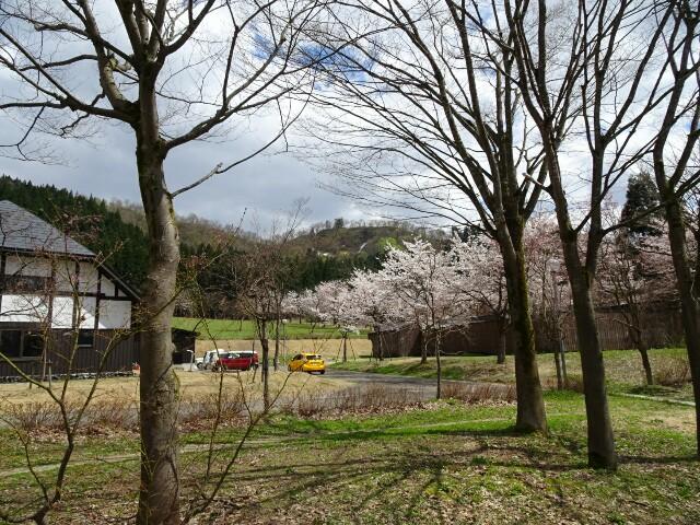 f:id:kiha-gojusan-hyakusan:20170423232529j:image