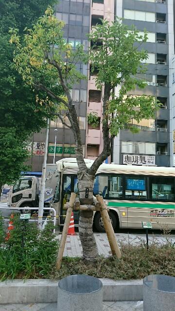 f:id:kiha-gojusan-hyakusan:20170524203426j:image