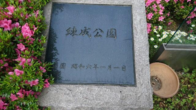 f:id:kiha-gojusan-hyakusan:20170526121331j:image
